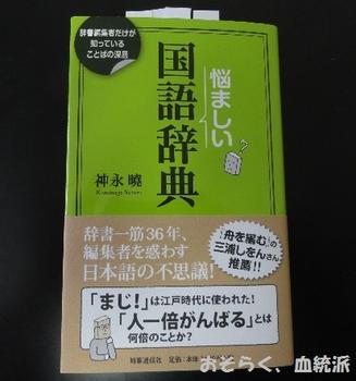 nayamasii01.JPG