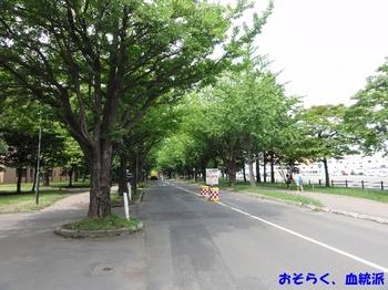 hokudaigaku02.JPG